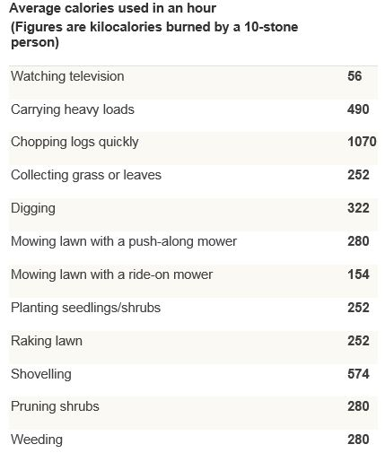 Average calories used gardening