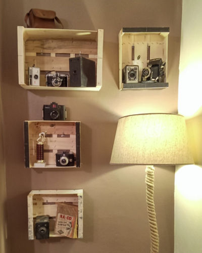 A selection of Emily's vintage camera collection