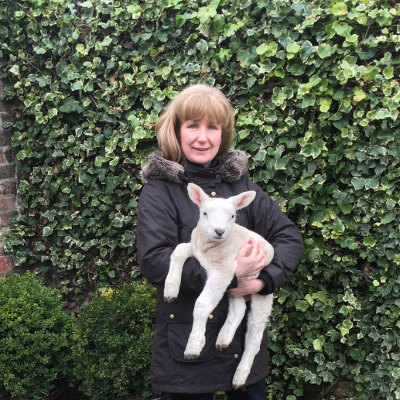 Debs with a Texel ram lamb