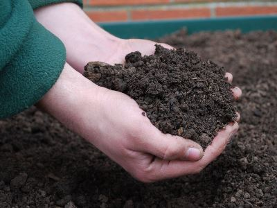 Hands holding Rolawn Topsoil