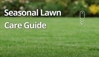 Seasonal Lawn Care Guide