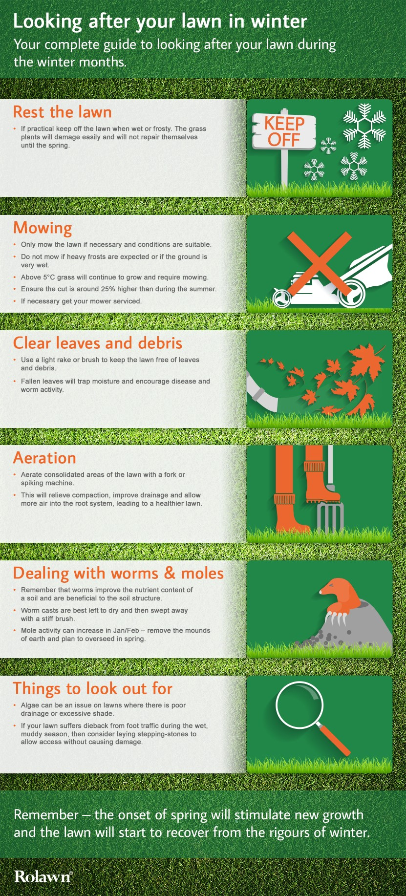 Winter Lawn Care Advice - Rolawn