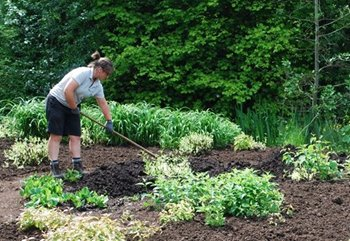 How to use ProMulch or Mulch your garden