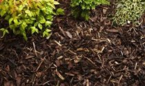 Bark & mulch