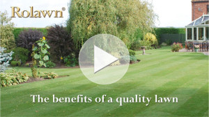 Click here to view The benefits of a quality lawn video