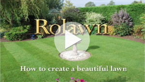 Click here to play how to create a beautiful lawn video