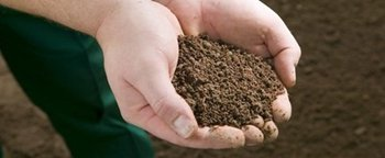 how to calculate how much topsoil i need