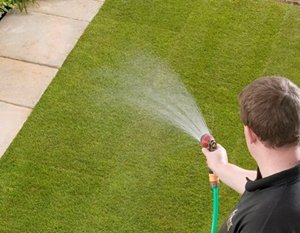 Lay turf quickly and water